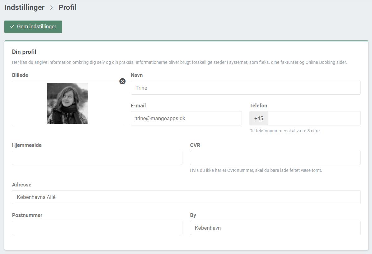 Billede der viser hvordan det ser ud under Din profil